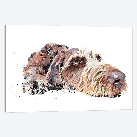 Wirehaired German Pointer Canvas Print #EWC238} by EdsWatercolours Art Print