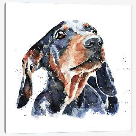 Black And Tan Dachshund Canvas Print #EWC25} by EdsWatercolours Canvas Art Print