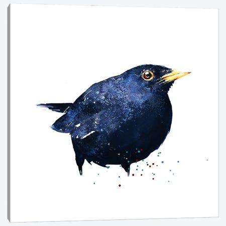 Black Bird Canvas Print #EWC26} by EdsWatercolours Art Print