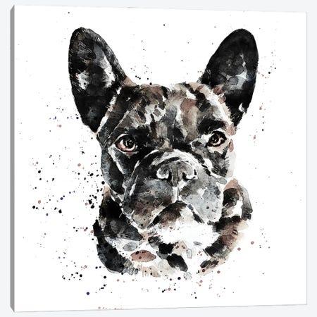 Black Frenchie Canvas Print #EWC27} by EdsWatercolours Art Print