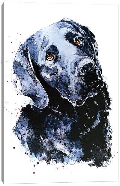 Black Labrador Patiently Waiting Canvas Art Print