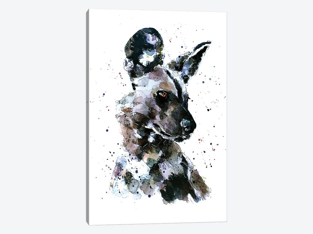African Wild Dog Pomp by EdsWatercolours 1-piece Canvas Print