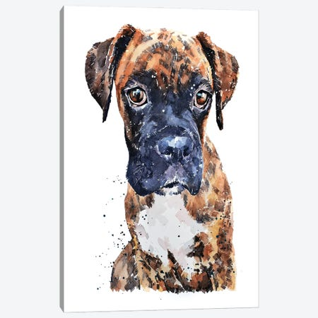 Brindle Boxer Pup Canvas Print #EWC42} by EdsWatercolours Canvas Wall Art