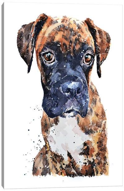 Brindle Boxer Pup Canvas Art Print