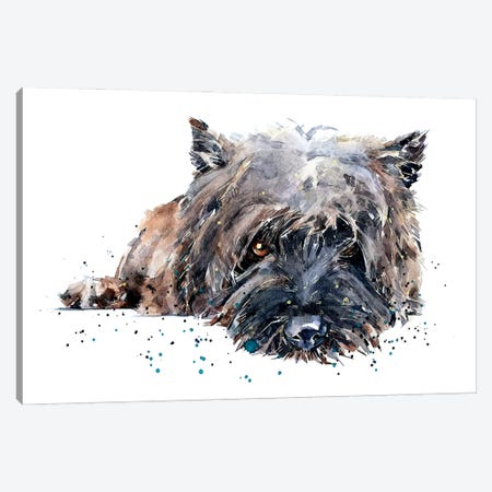 Cairn Terrier II Canvas Print #EWC48} by EdsWatercolours Canvas Artwork