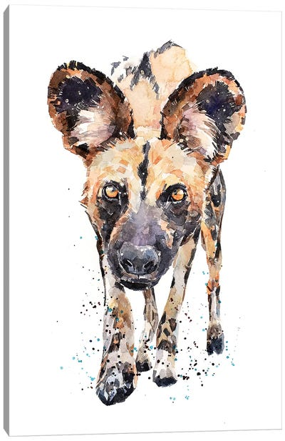 African Wild Dog What's Cooking Canvas Art Print