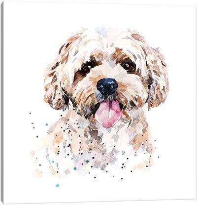 Cockapoo I Canvas Art Print