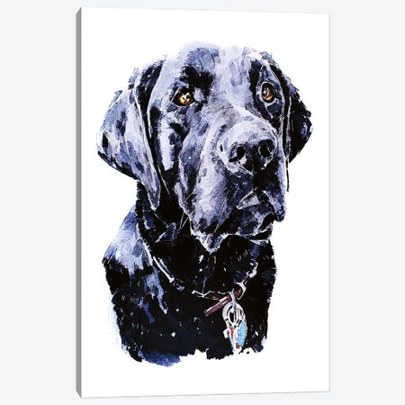 Dark As The Night,Bright As The Sun - Labrador Canvas Print #EWC67} by EdsWatercolours Canvas Print