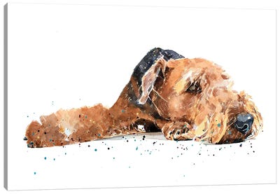 Airedale Canvas Art Print