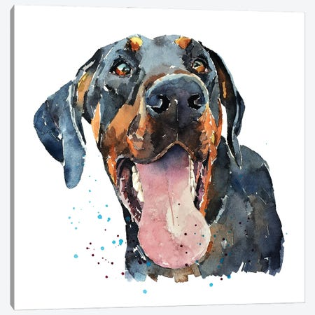 Doberman Smile Canvas Print #EWC70} by EdsWatercolours Canvas Art Print