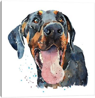 Doberman Smile Canvas Art Print