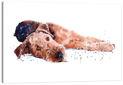 Airedale I Canvas Art Print
