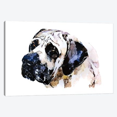 English Mastiff Canvas Print #EWC83} by EdsWatercolours Canvas Art