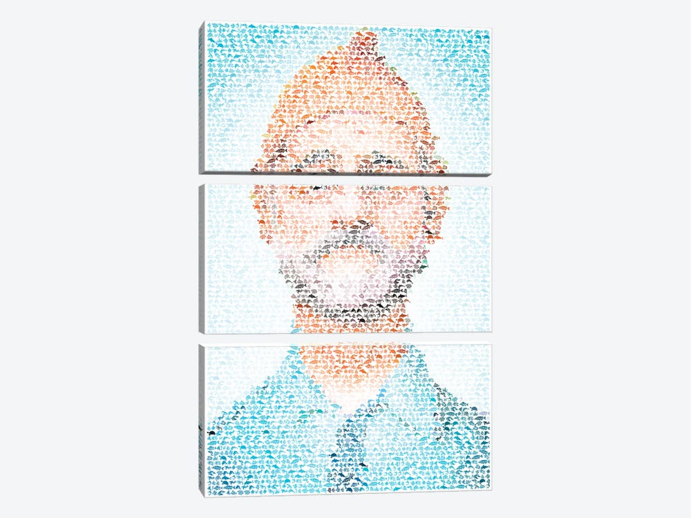 Steve Zissou by Robotic Ewe 3-piece Canvas Wall Art