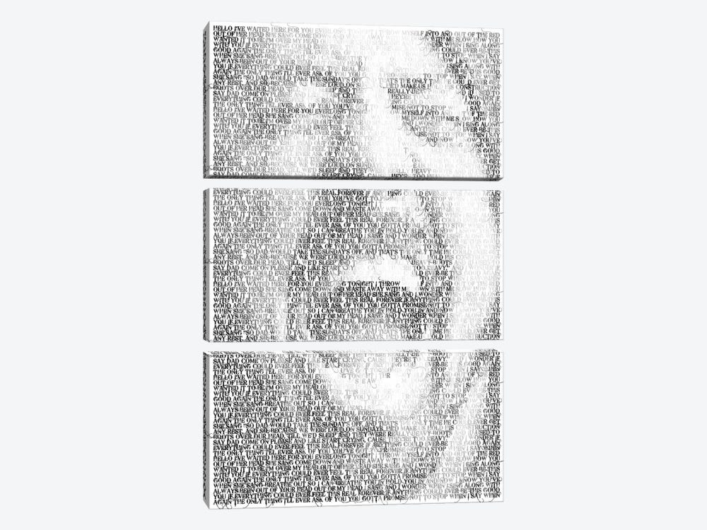 Grohl by Robotic Ewe 3-piece Canvas Wall Art