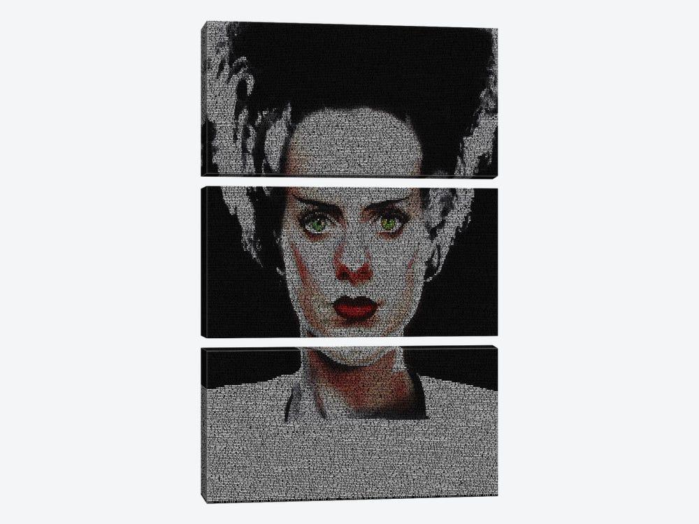 The Bride Of Frankenstein by Robotic Ewe 3-piece Canvas Artwork