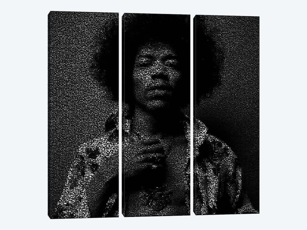 Jimi by Robotic Ewe 3-piece Canvas Print