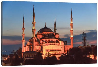 Turkey, Istanbul. Sultan Ahmet Mosque, Rooftop view. Canvas Art Print