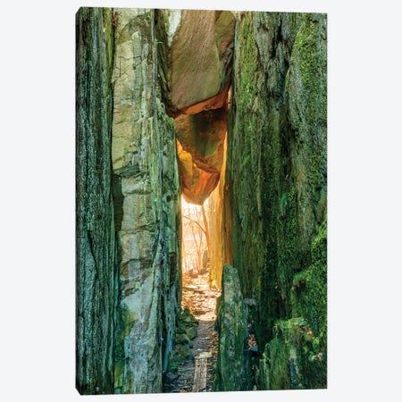 Sweden, Bohuslan Province. Path through wedged rocks near Uddevalla. Canvas Print #EWI38} by Emily Wilson Canvas Art Print