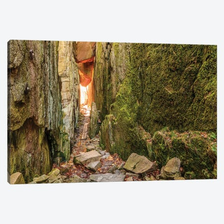 Sweden, Bohuslan Province. Path through wedged rocks near Uddevalla. Canvas Print #EWI39} by Emily Wilson Canvas Art Print