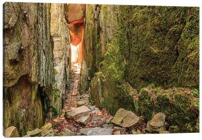 Sweden, Bohuslan Province. Path through wedged rocks near Uddevalla. Canvas Art Print