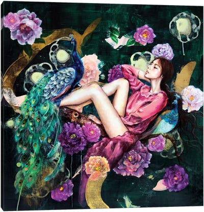 The Dreamer's Night Canvas Art Print