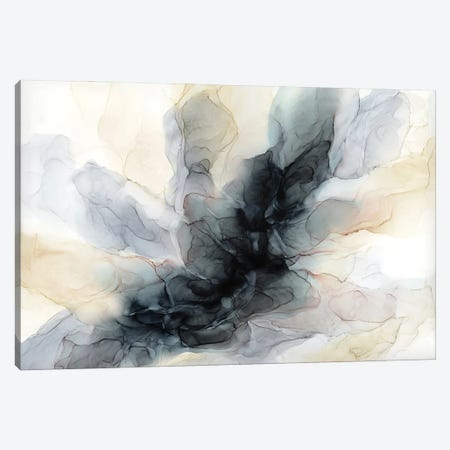 Cavern Canvas Print #EZK14} by Elizabeth Karlson Art Print