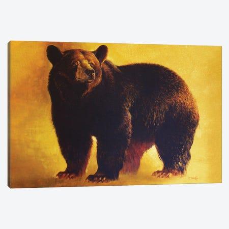 Black Bear Boar Canvas Print #EZT14} by Ezra Tucker Canvas Artwork