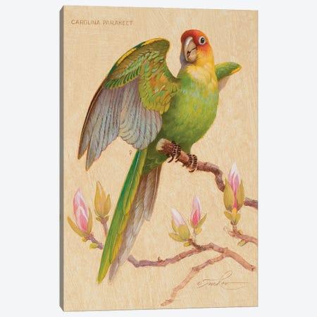 Carolina Parakeet & Magnolia Canvas Print #EZT23} by Ezra Tucker Canvas Wall Art