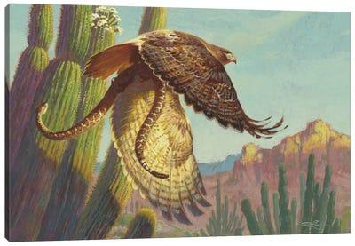 Redtail & Rattler Canvas Art Print
