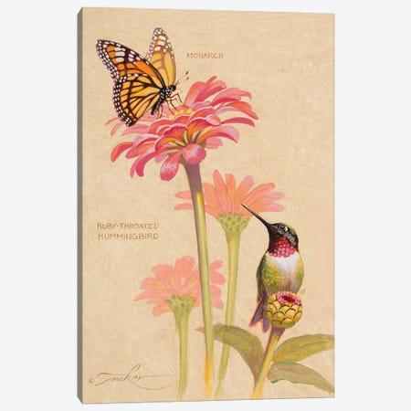 Ruby-Throated Hummingbird & Monarch Canvas Print #EZT48} by Ezra Tucker Canvas Artwork