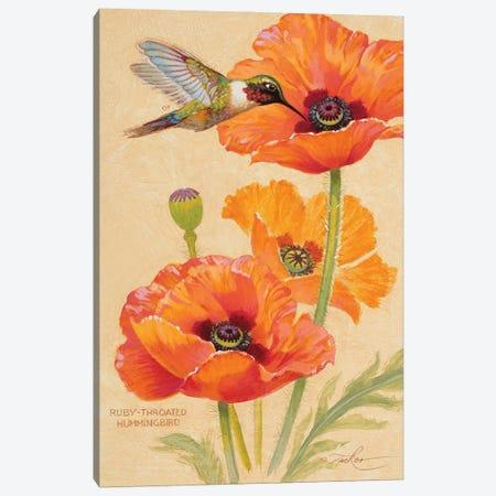 Ruby-Throated Hummingbird & Poppies Canvas Print #EZT49} by Ezra Tucker Canvas Wall Art