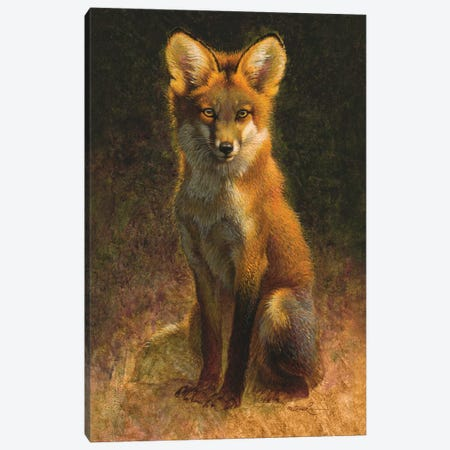 Sitting Pretty Canvas Print #EZT53} by Ezra Tucker Art Print