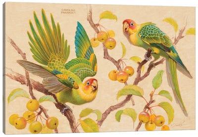 Tart Treats Canvas Art Print