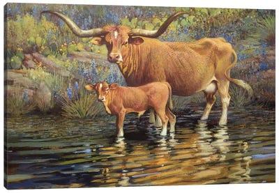 Texas Reflection Canvas Art Print