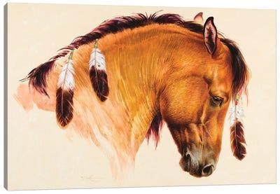 War Horse XII Canvas Art Print