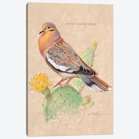 White Winged Dove On Cactus Canvas Print #EZT71} by Ezra Tucker Canvas Art Print