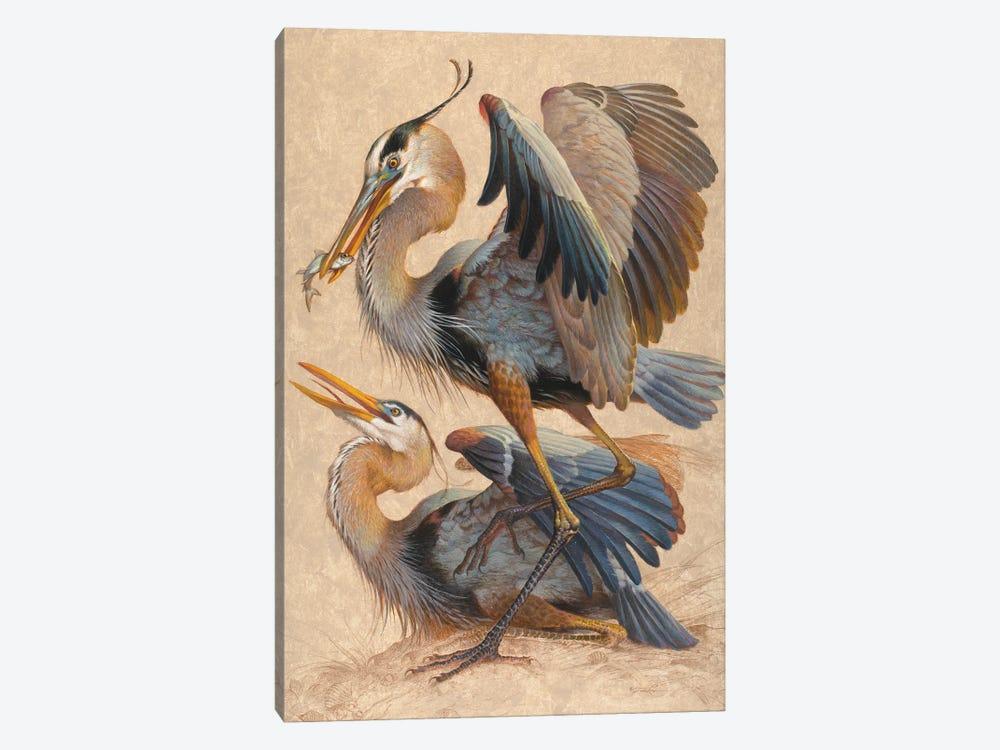 Great Blue Herons by Ezra Tucker 1-piece Canvas Print