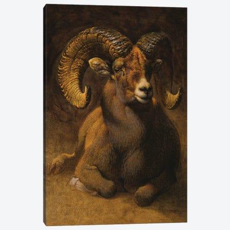 Rocky Mountain Ram Canvas Print #EZT92} by Ezra Tucker Canvas Art Print