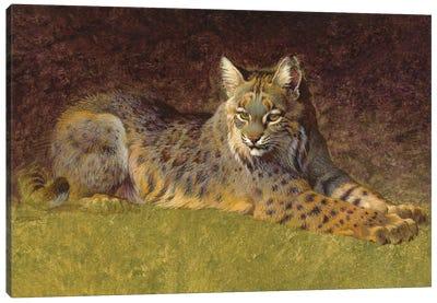 Woodland Sphinx Canvas Art Print