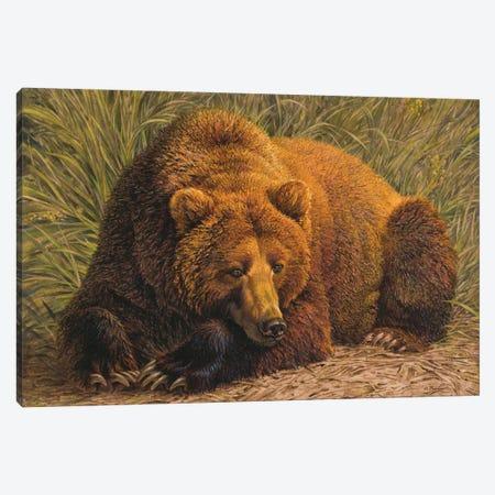 Bearly Awake Canvas Print #EZT9} by Ezra Tucker Canvas Wall Art