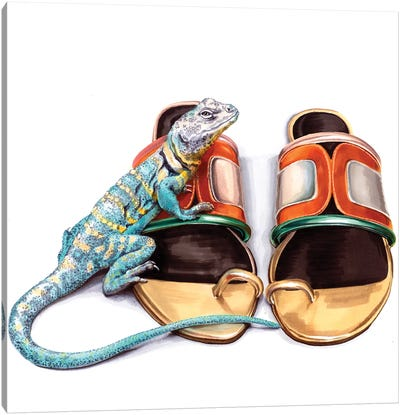 Lizard On Pier Hardy Shoes Canvas Art Print