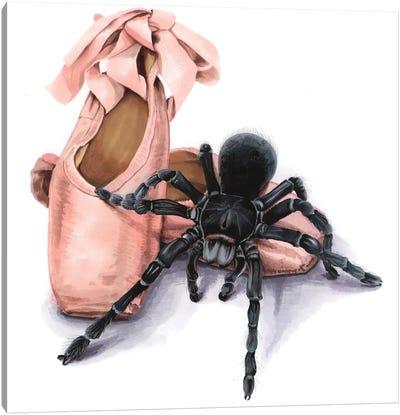 Pointe Shoes And Tarantul Canvas Art Print
