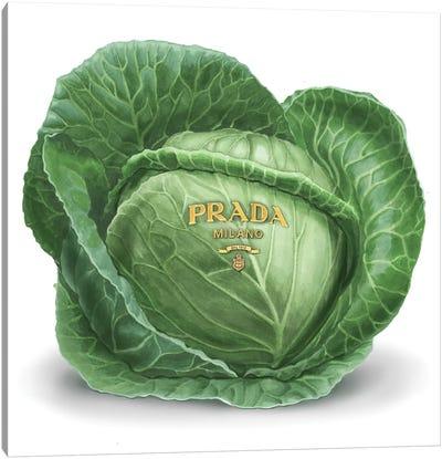 Prada Cabbage Canvas Art Print