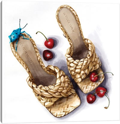 Bast Shoes Canvas Art Print