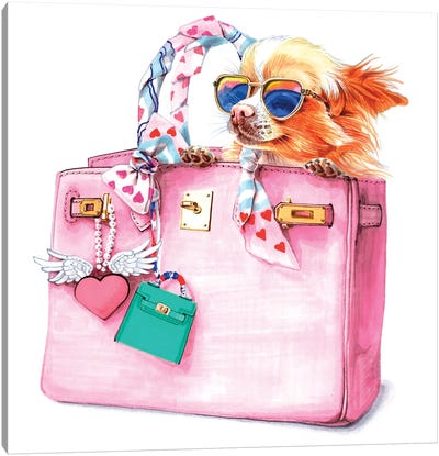 Chihuahua In Sunglusses And Hermes Bag Canvas Art Print