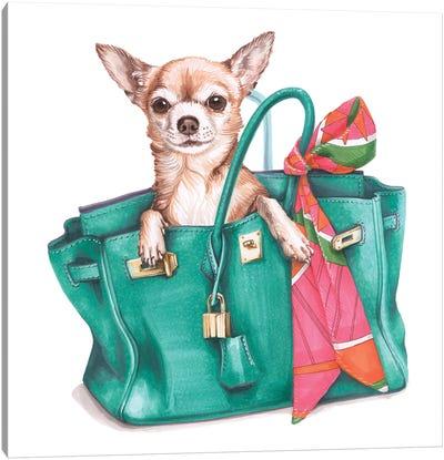 Chihuahua Jane In Hermes Birkin Bag Canvas Art Print