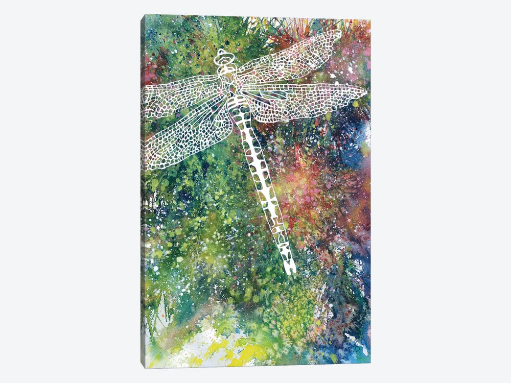 Dragonfly by Michelle Faber 1-piece Canvas Art