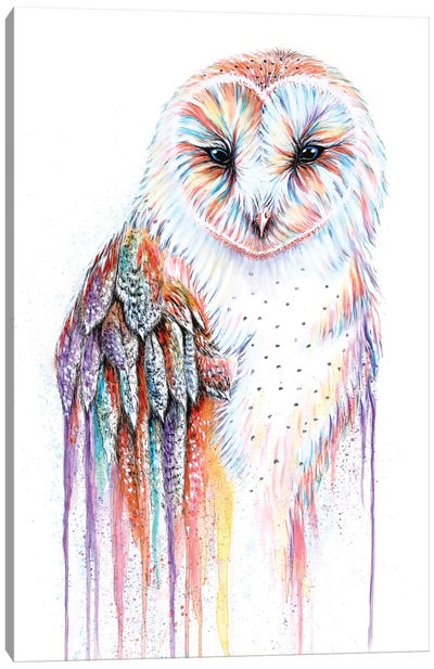 Barred Rainbow Owl Canvas Art Print