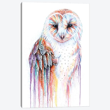 Barred Rainbow Owl Canvas Print #FAB1} by Michelle Faber Canvas Artwork